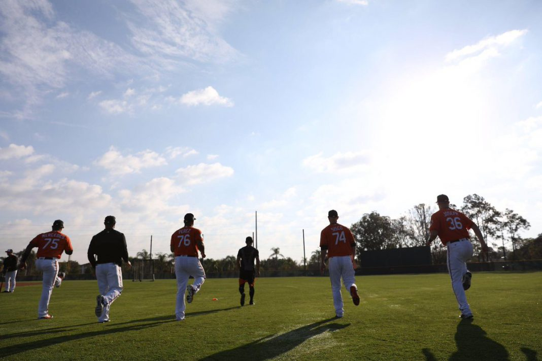 minor league camp roster